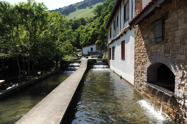 Le poisson exceptionnel du Pays Basque : la truite de Banca